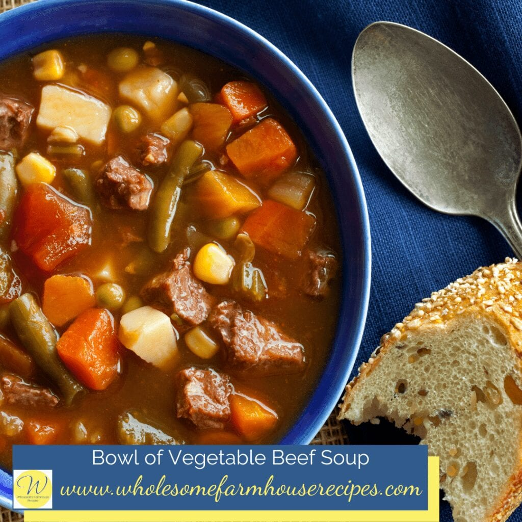 Bowl of Vegetable Beef Soup