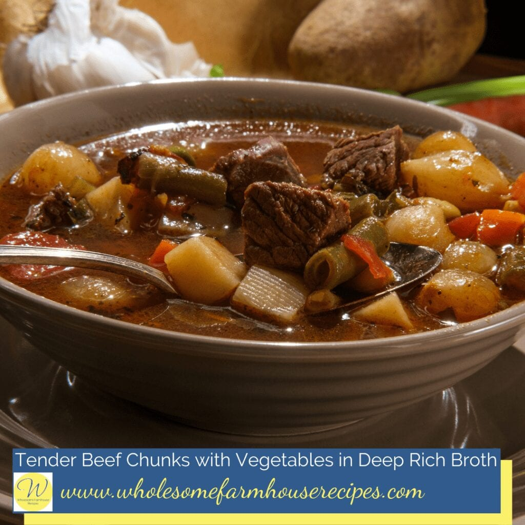 Tender Beef Chunks with Vegetables in Deep Rich Broth