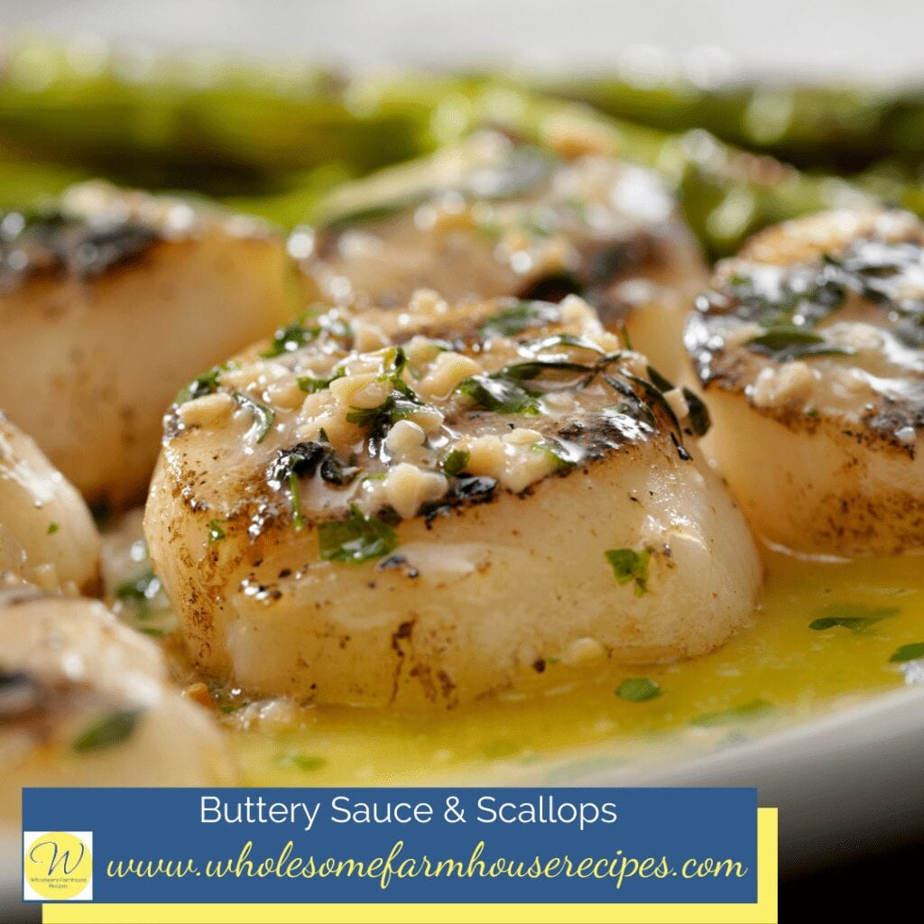 Buttery Sauce and Scallops