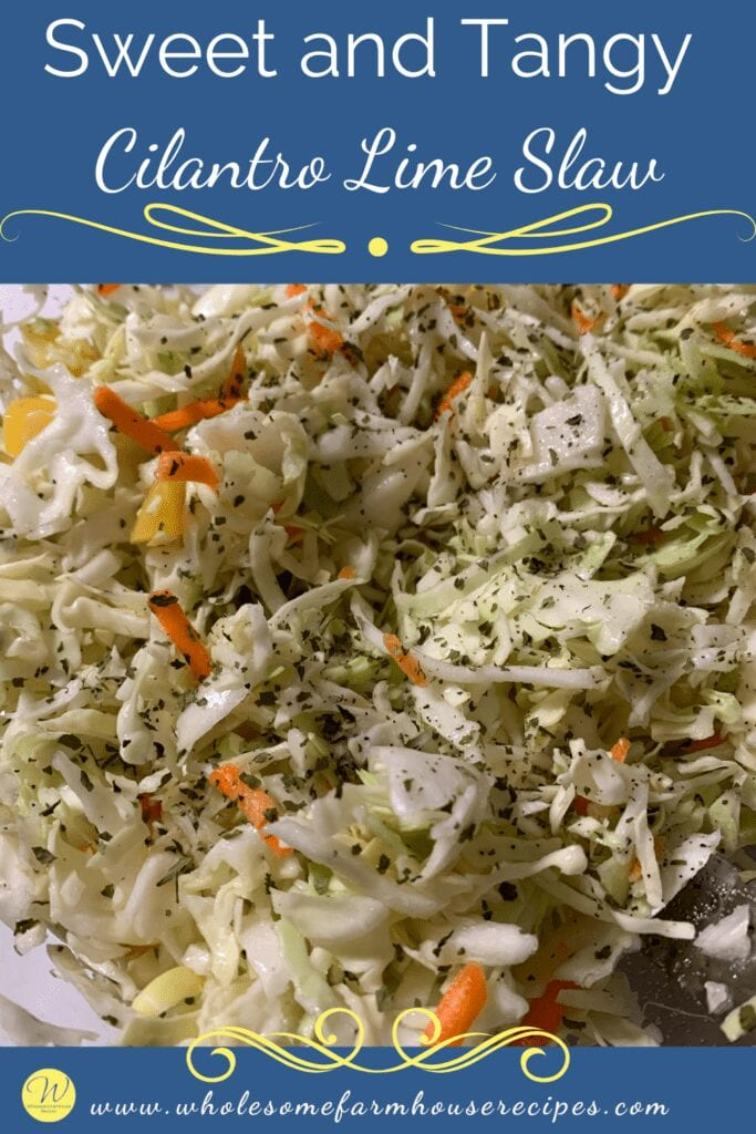 Sweet and Tangy Cilantro Lime Slaw Pin