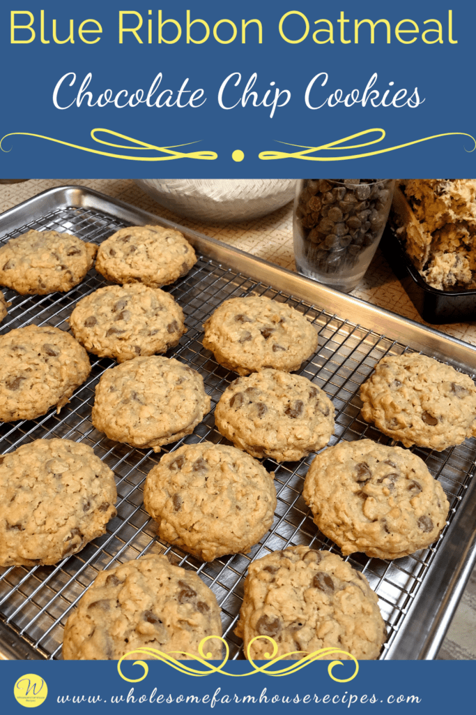 Blue Ribbon Oatmeal Chocolate Chip Cookies