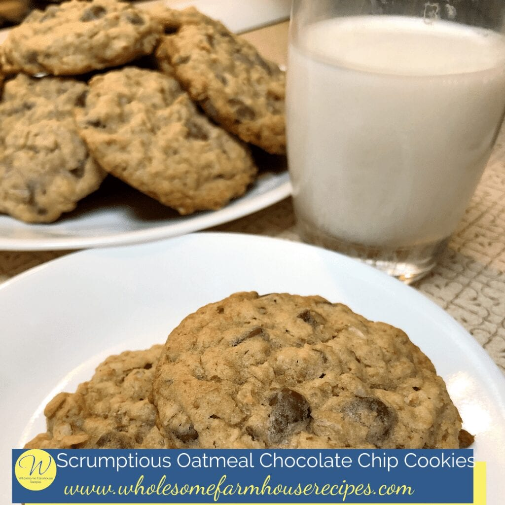 Scrumptious Oatmeal Chocolate Chip Cookies Served with a Glass of Milk