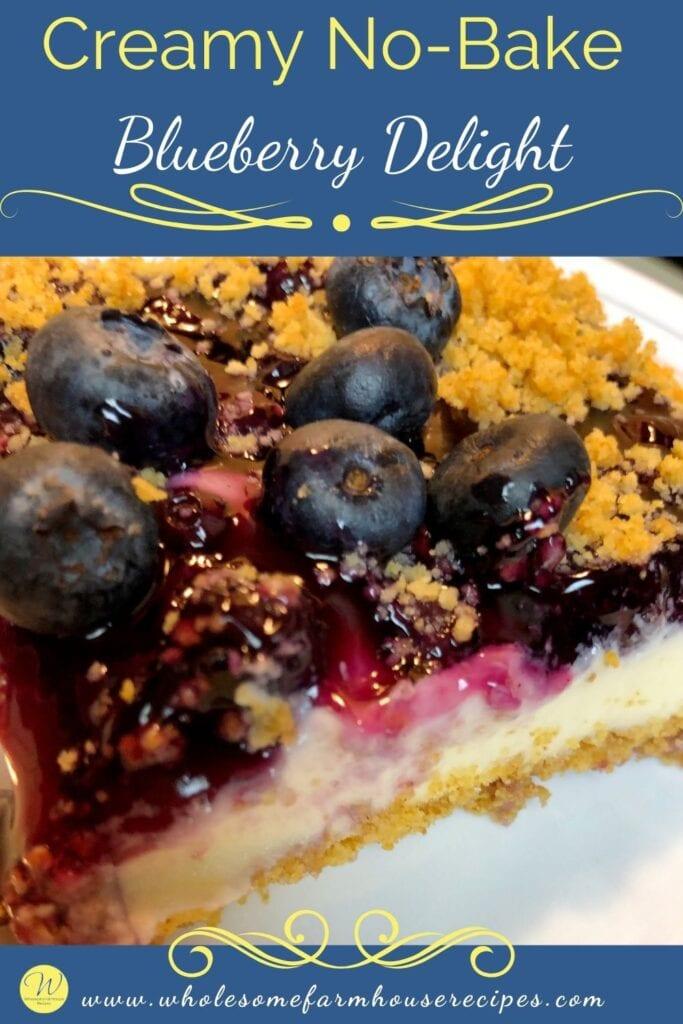 Creamy No-Bake Blueberry Delight