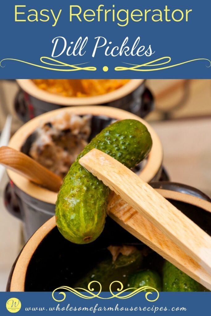 Easy Refrigerator Dill Pickles