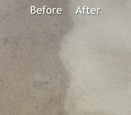 carpet-cleaning-before-after-2-262x230 Fishers Carpet Cleaning