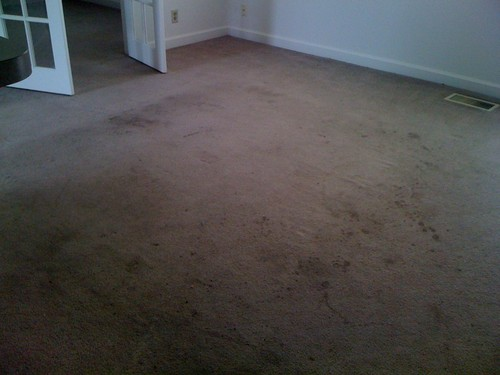 Before - Noblesville Carpet Carpet Cleaning