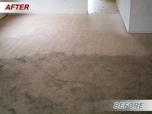 before_011218__Fishers Carpet Cleaning