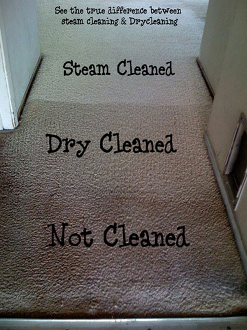 before_3__011218__Fishers Carpet Cleaning