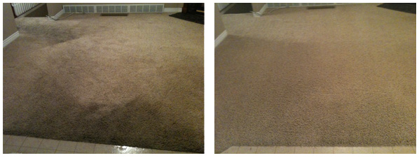 before_after_011218__Fishers Carpet Cleaning