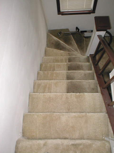 Stairs Cleaning - Before and After