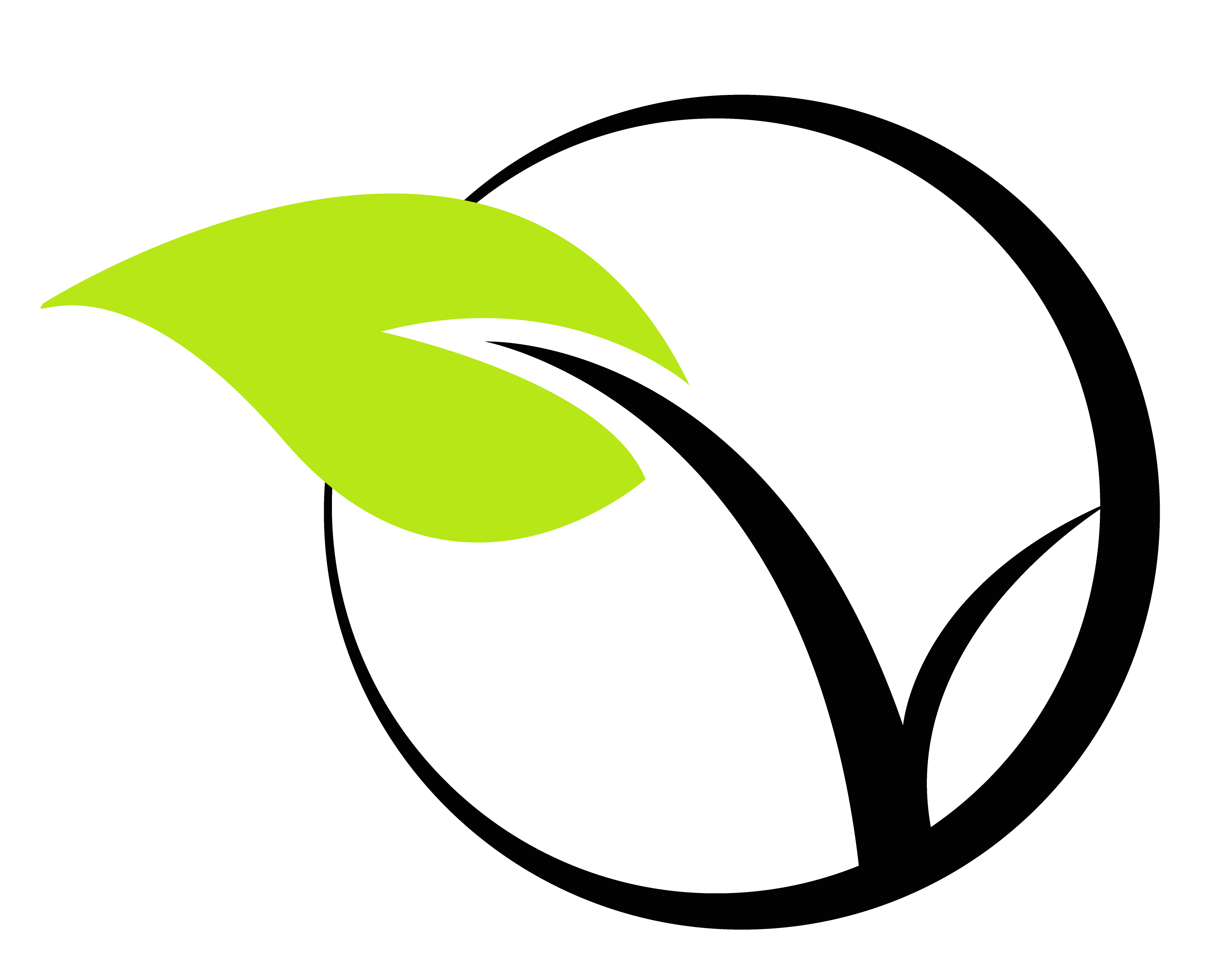 Logo Vrac de choix
