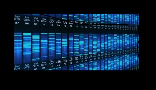 Home DNA Testing: Contributing to the DNA Database