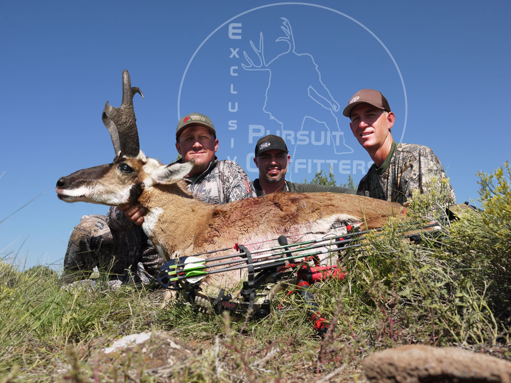 Cody, Craig & Lee lived an awesome last day bowhunting moment.