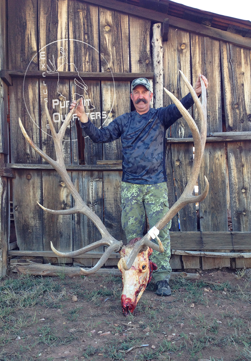 After getting the cape of this giant bodied bull, you could see just how big he was.