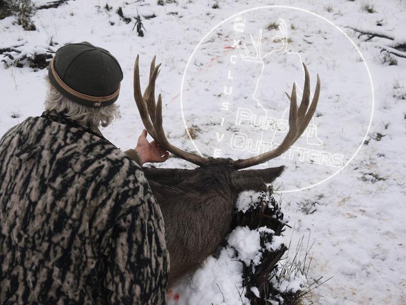 Arizona-Strip-Mule-Deer-Hunting