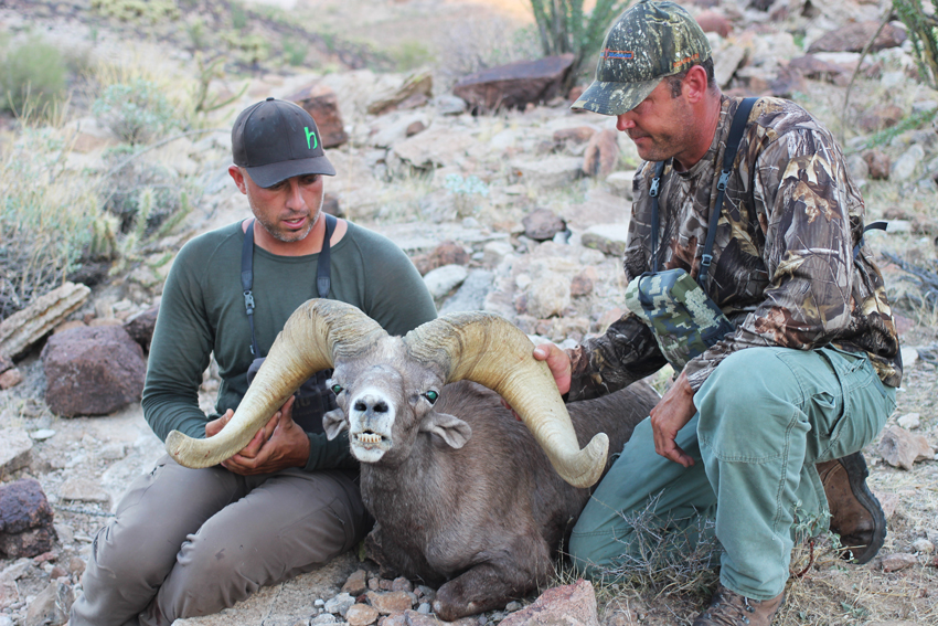 Craig Steele & Seth Meeske looking over the flare of this awesome desert bighorn ram.
