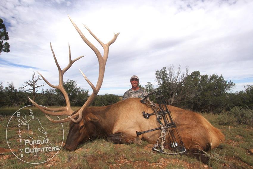 David with his well earned 2015 AZ Archery Bull Elk.