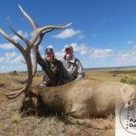 2019 Rifle Bull Elk