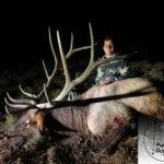 2019 Archery Bull Elk