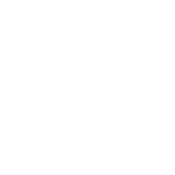 Real-Ginger