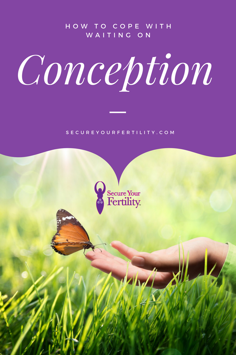syf_conception