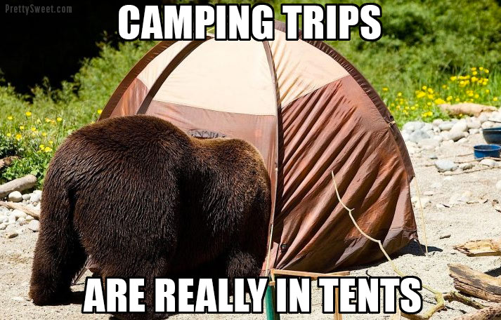 camping in tents pun