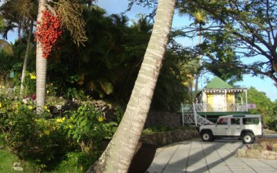 Roads of Nevis