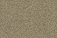 P248-TAUPE-t