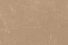 Parchment-CR505