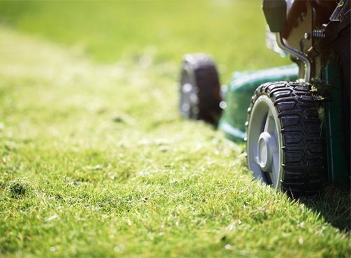 Close up of green lawn mower cutting grass