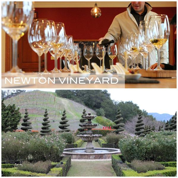 Newton Vineyard