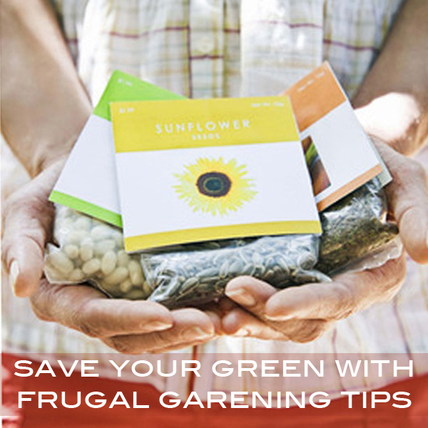 save your green with frugal gardening tips