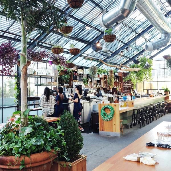 Commissary Restaurant | The Line Hotel LA