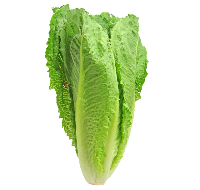 Outbreaks in Romaine Lettuce continue