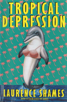 First Edition Tropical Depression