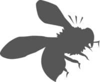 Bee Removal Los Angeles County