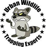 Los Angeles Animal Removal By Urban Wildlife Trapping Experts