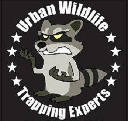 Orange County, CA Wildlife & Animal Control: Trapping