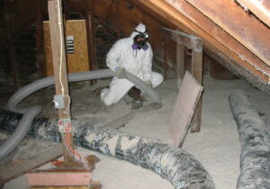 Attic Cleaning Services
