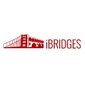 _0003_iBridges