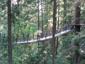 "One of the seven suspension bridges in the ""Walk in the Treetops Adventure"" at Capilano in Vancouver."
