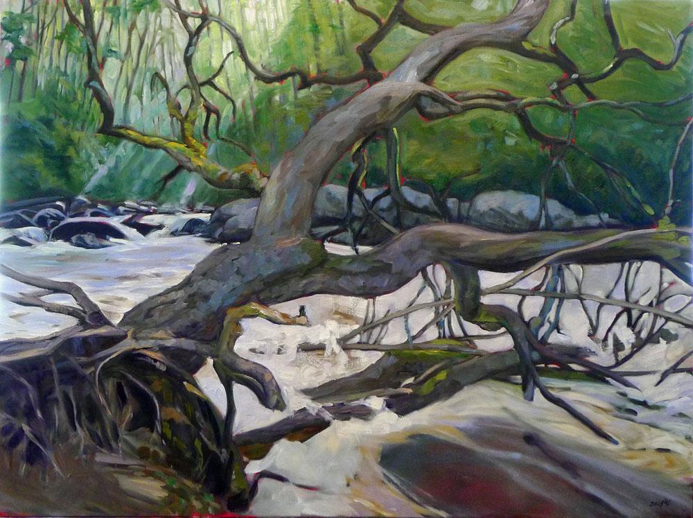 """""""Deadwood,"""" 30X40, oil on canvas, available."""
