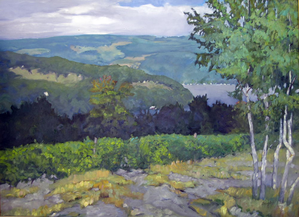 """Keuka Vineyard,"" 30X40, oil on canvas, available."
