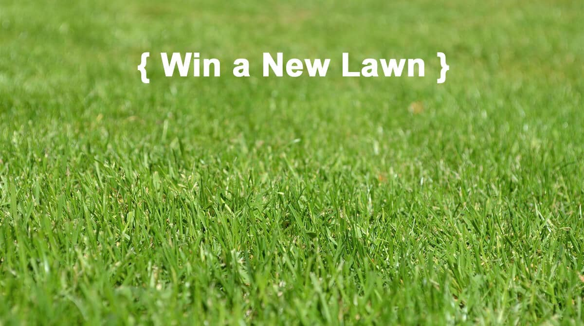 Win A New Lawn For Summer! $500 Value