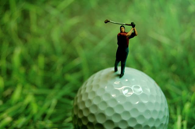 bentgrass sod for golf courses - mini golfer