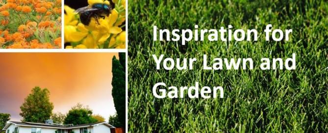 inspiration lawn garden