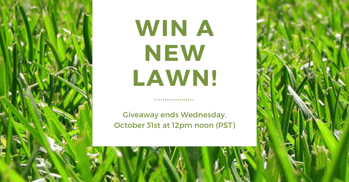 Win A New TWCA-Certified Drought Tolerant Lawn