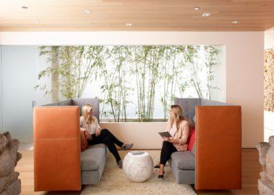 HaworthHealthEnv-GranTorino-sofas-2women-2140244