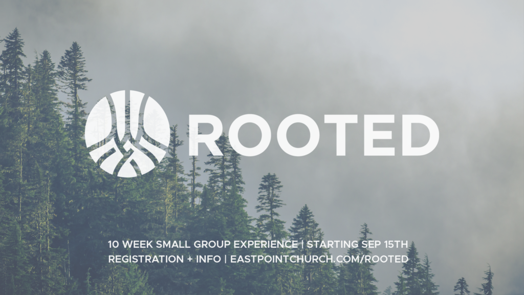 Rooted Fall 2019