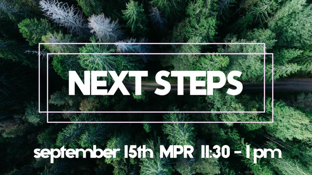 Next Steps_FINAL (1)